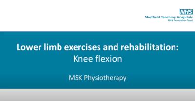 Knee Flexion Thumbnail