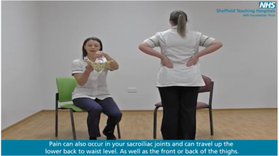 Introduction to pregnancy related pelvic girdle pain and back pain Thumbnail