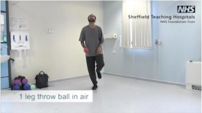 1 leg throw ball in the air Thumbnail