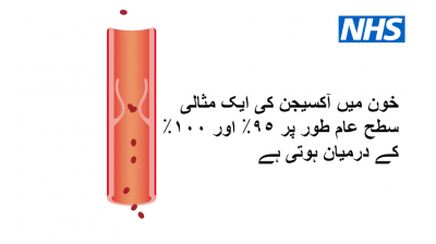 How to use your pulse oximeter at home (Urdu) Thumbnail