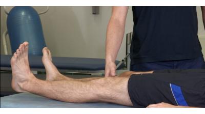 Quads; Static quad contraction Thumbnail