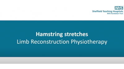 Hamstring Stretches Thumbnail