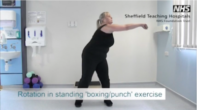 Rotation in standing 'Boxing punch' Thumbnail